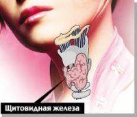 Лікування щитовидної залози