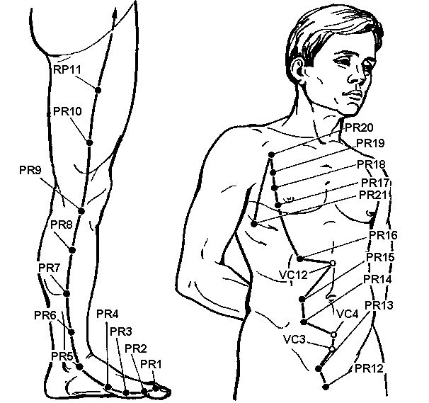 Акупунктурні точки меридіана селезінки і підшлункової залози