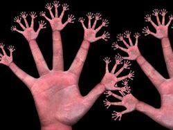 Пальці