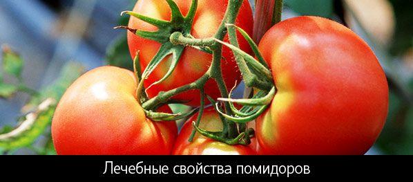 Лікувальні властивості помідорів