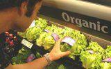 Відмінності між органічними і неорганічними продуктами